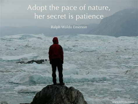 Tips On Patiently by Tips For Cultivating Patience As An Ongoing Practice