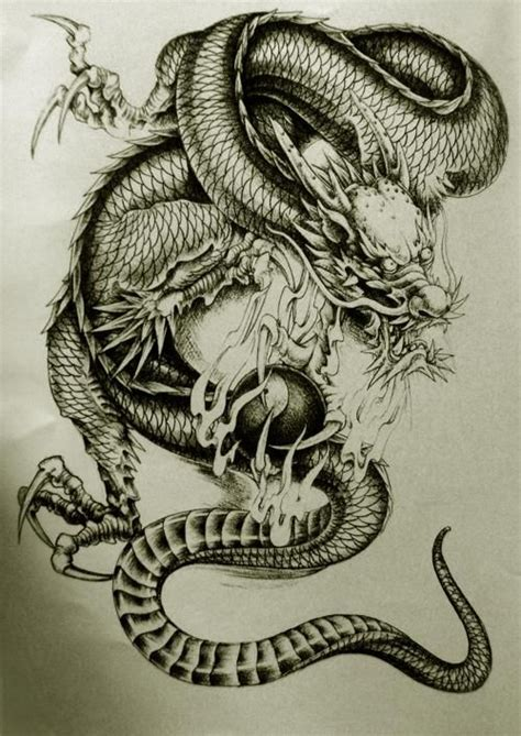 chinese dragon tattoo design gallery designs
