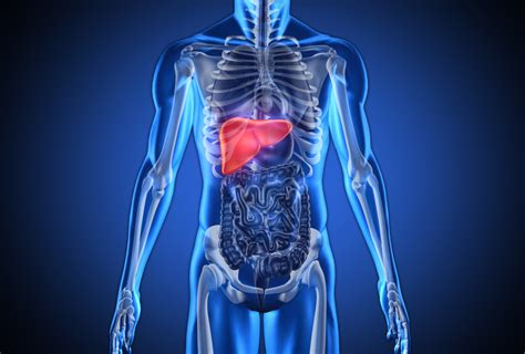 the food that saves you from liver cancer easy health
