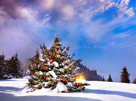 ver fotos para navidad im 225 genes de navidad fondos de navidad