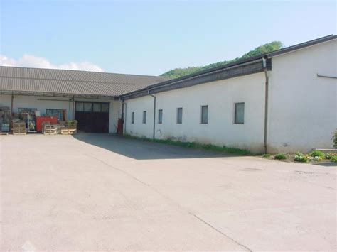 ape capannoni industriali vendita capannone industriale a gurahont romania strada