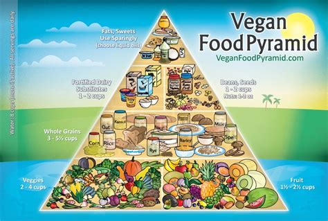 for a modern guide to plant based vegan gluten free recipes for busy lives books what is the vegetarian and vegan diet pyramid plant