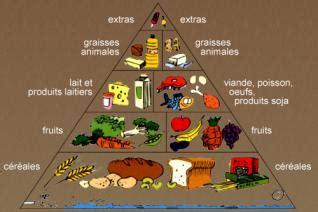 alimenti contenente zinco le fruit du baobab source de fer 233 l 233 ment indispensable