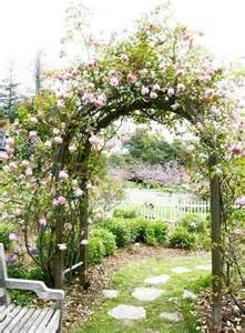 Garden Arch With Flowers Roses Arbor Books The Of Tenacity