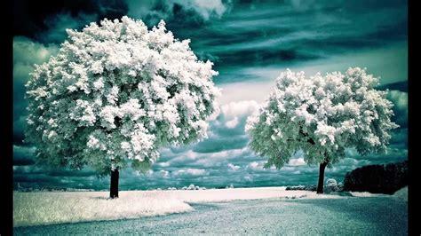 imagenes de paisajes con nieve paisajes de nieve 2 parte youtube