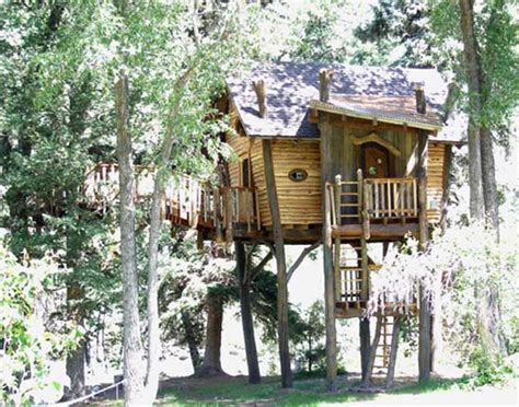 small tree house designs small contemporary artistic wooden tiny tree house design newhouseofart com small
