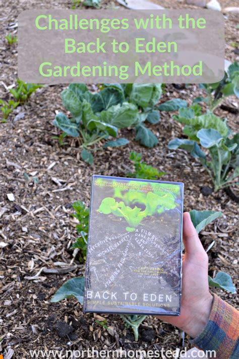 Back To Gardening Method by Challenges With The Back To Method Northern Homestead