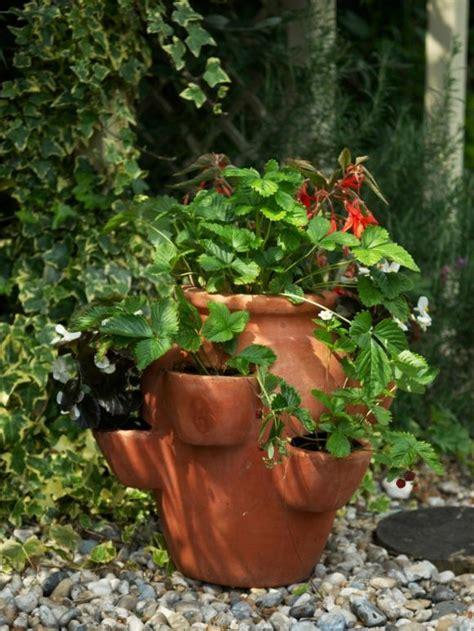 pot jardin design pot de fleur terre cuite parfait pour la d 233 co de jardin