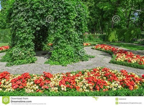 giardino ornamentale giardino ornamentale con le begonie di fioritura