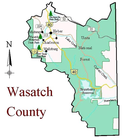 Wasatch County Records Birding In Wasatch County Utah