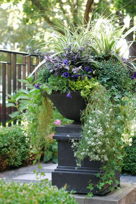 fall annuals container planter front yard urn landscape
