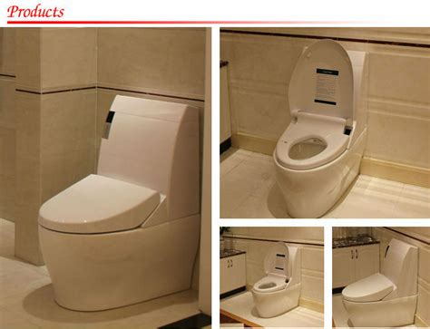 Water Closet Vs Lavatory by Be Similar To Japanese Water Closet Toilet Toto Automatic Toilet View Water Closet Toilet Gizo
