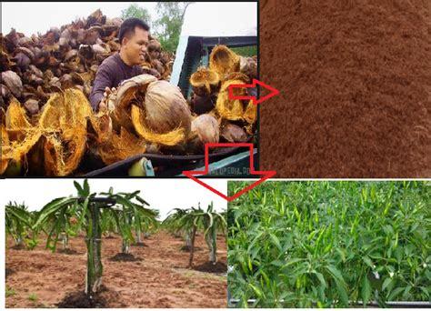 Pupuk Mengandung Kalsium inilah proses pembuatan pupuk organik dari sabut kelapa