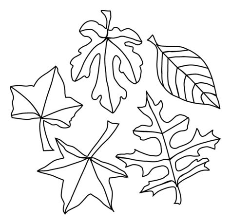 leaf color page az coloring pages