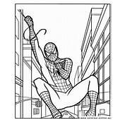 Colorear Dibujos De Spiderman  P&225gina 2 Para