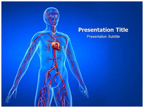 Powerpoint On Cardiovascular System Centreurope Info Circulatory System Powerpoint