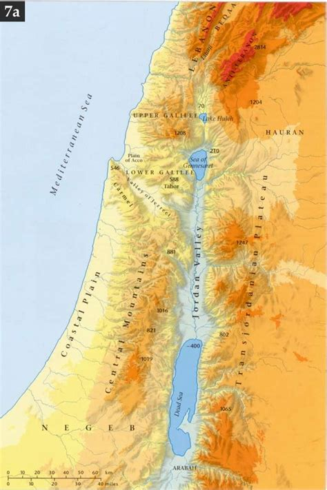 bebaskan palestine mengenal geografi haran bumi palestina bebaskan palestina