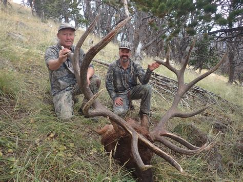 New Records New World Record For Crossbow Elk Confirmed By Sci Outdoorhub