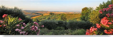 buying a house in italy process how to buy in italy real italia boutique property in italy
