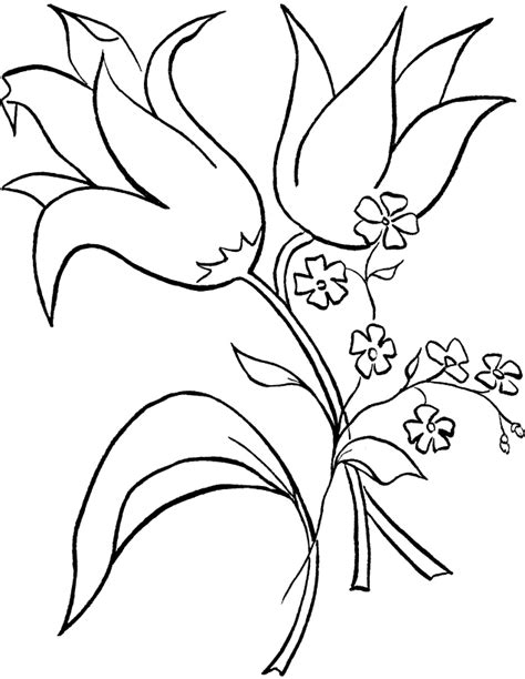 free coloring pictures of tropical flowers free coloring pages of simple tropical flower