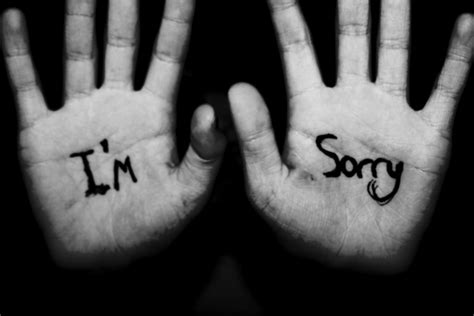 im sorry i m sorry i m so lonely