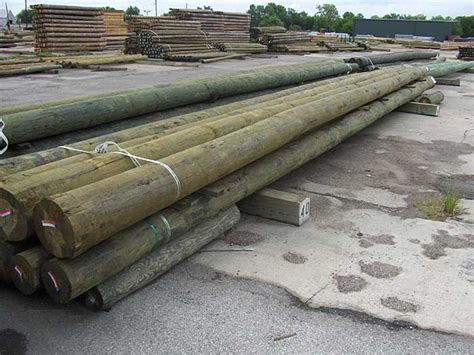 boat building yellow pine wood timber poles pilings timber building products