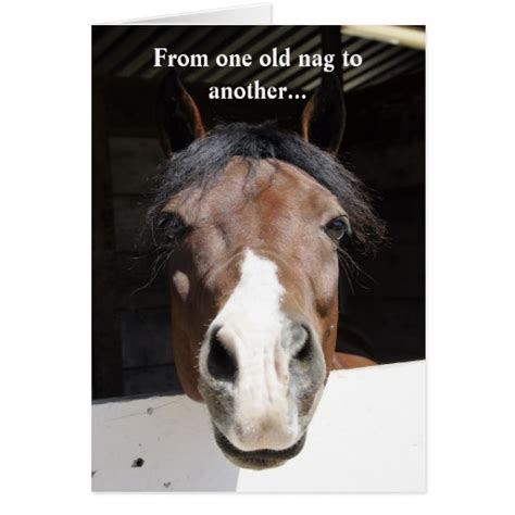 printable horse happy birthday cards barn horse old nag happy birthday card zazzle