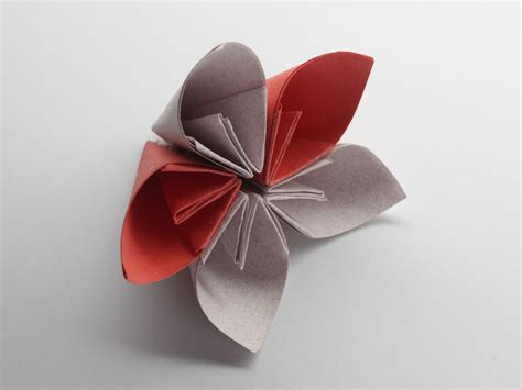 How To Fold A Flower Out Of Paper - how to make a kusudama flower with pictures wikihow
