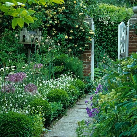 best climbing plants for fences climbing plants