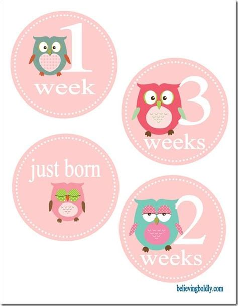 printable onesie stickers even more awesome than i was hoping for when i did the