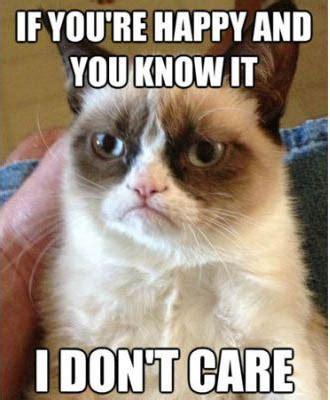 Funny Angry Cat Meme - my 35 favorite grumpy cat memes