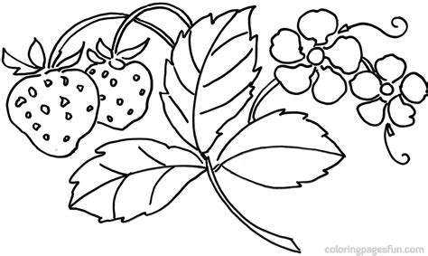 coloring pages of flowers that you can print flowers coloring pages coloring page 21876
