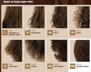 les diff 233 rents types de cheveux the universal