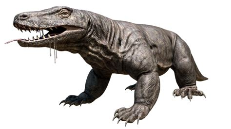 8 giant prehistoric animals that was dominating the world