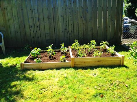 starting a raised bed vegetable garden starting a raised bed garden 28 images raised garden
