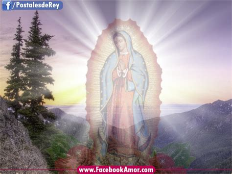 imagenes virgen de guadalupe bonitas imagenes de la guadalupana con frases imagui