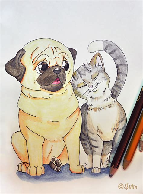 cat pug pug and cat by siilin on deviantart