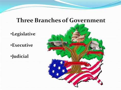 separation of powers essay the question is the separation
