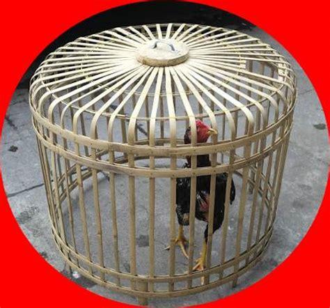 Obat Cacing Buat Ayam kurungan ayam bangkok bambu situs ayam bangkok 2017