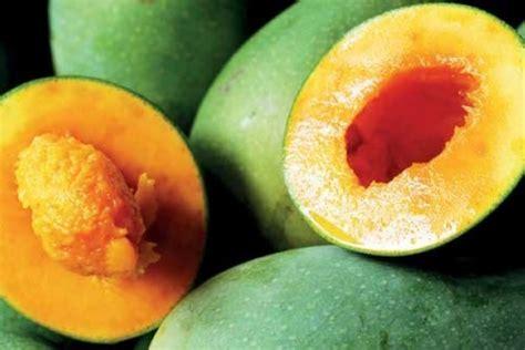 jenis mangga   enak makan satu buah  cukup