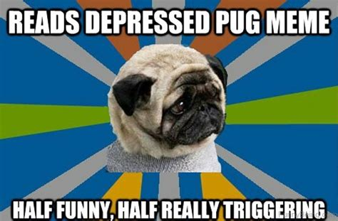 Depressed Pug Meme - 88 superb pug memes pictures