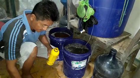 Dasar Dasar Persiapan Sel Untuk Kromatografi membuat compost tea rutin untuk pupuk tanaman maupun pupuk dasar persiapan media tanam
