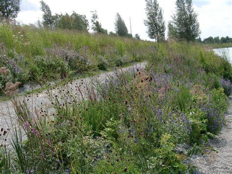 Garten Gestalten Trockener Boden by Mit Heimischen Stauden Gestalten Gartenzauber