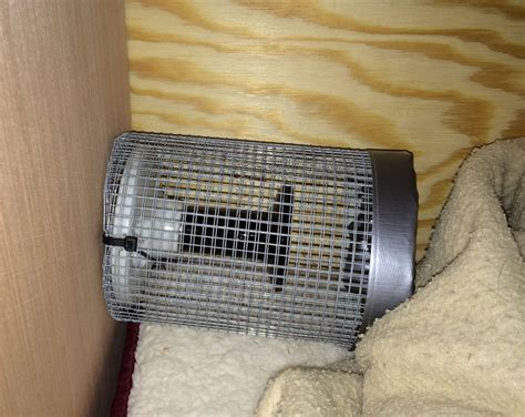 insulated dog house with heater insulated heated dog house flame org