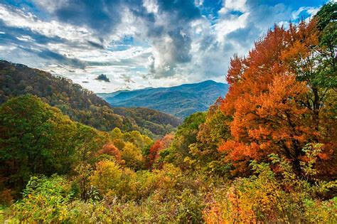 colors of the mountain fall colors blue ridge parkway u s national park service