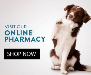 contact   cost spay clinic