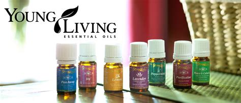 google images young living essential oils how i got started with essential oils my story