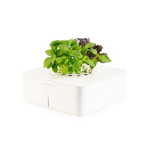 click and grow reinventing indoor gardening click and grow electronic