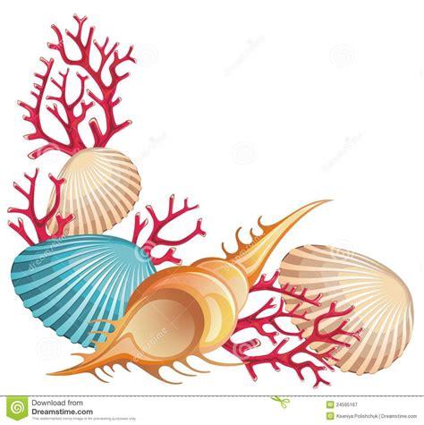 sea shell clip seashell clip www imgkid the image kid has it