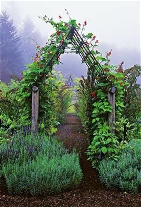 Garden Arbor Height 1000 Ideas About Metal Arbor On Arbors